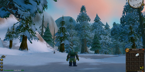 2nd day in Azeroth