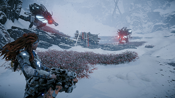 HZD_4_small